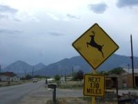 A fun sign